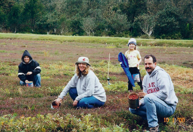 U-Pick cranberries: a family experience